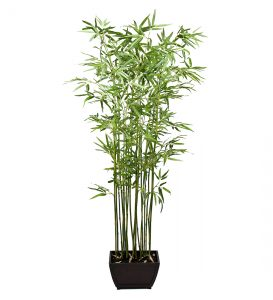 Bamboo190